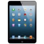Apple iPad mini 16GB Wi-Fi - Tablet (1 GHz, Apple, A5, 0.5 GB, 16 GB, Flash) Negro